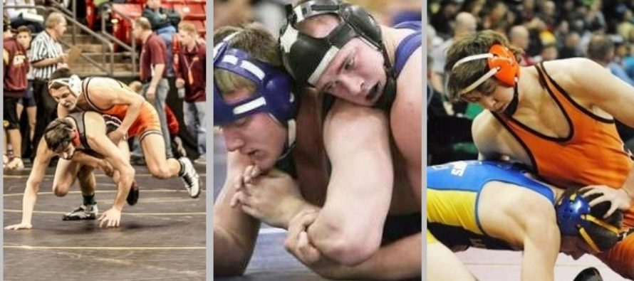 16-17 WI High School Rankings No. 7 | Wisconsin Wrestling Online